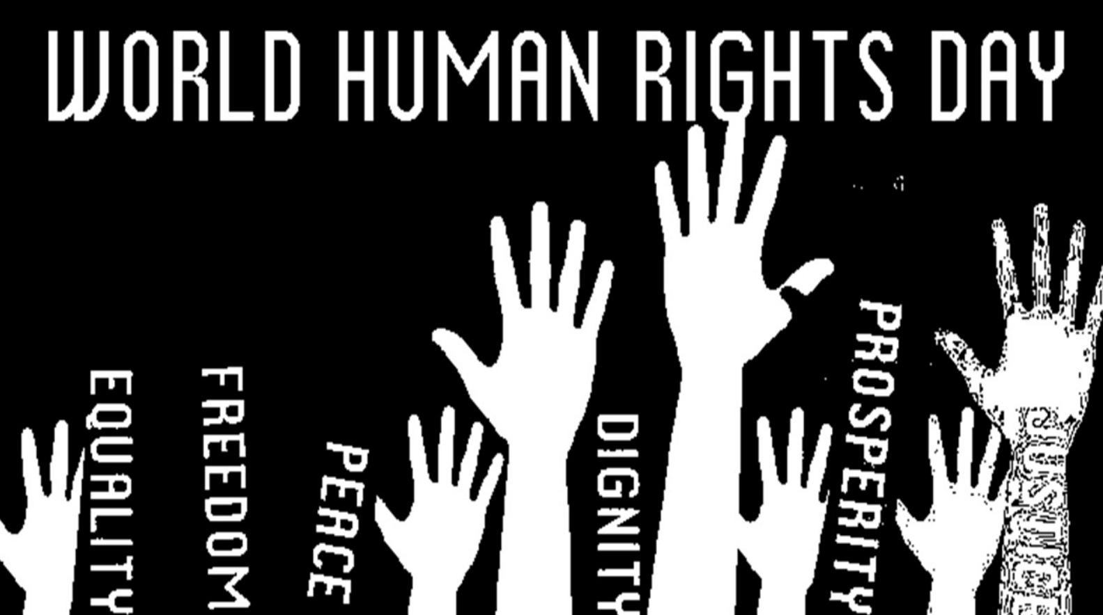 Music and Human Rights Online Video